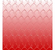 Light to Dark Red Scales Photographic Print