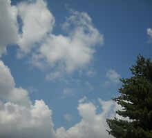 Meaningful Clouds by Mimmie Hunter