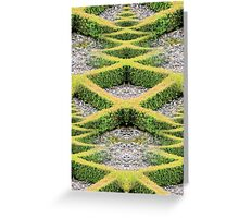 Hedge 2 Greeting Card