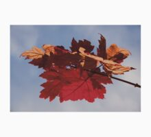 Cheerful Red Canadian Maple Leaves in the Fall Kids Clothes