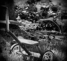 Trike by © Jolie  Buchanan