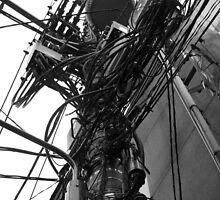 wired by Florian Verhein