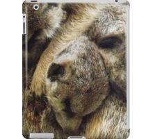 Pile of Baby Meerkats Sleeping iPad Case/Skin