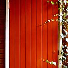 Red door by Anisul Hoque