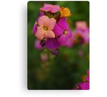 Wallflower World Canvas Print
