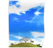 A single tree on the top Poster