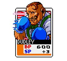 Dudley Photographic Print