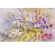 Wild Flower Tapestry Photographic Print