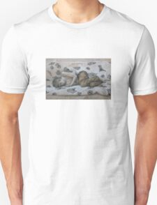 Cold Slumber T-Shirt