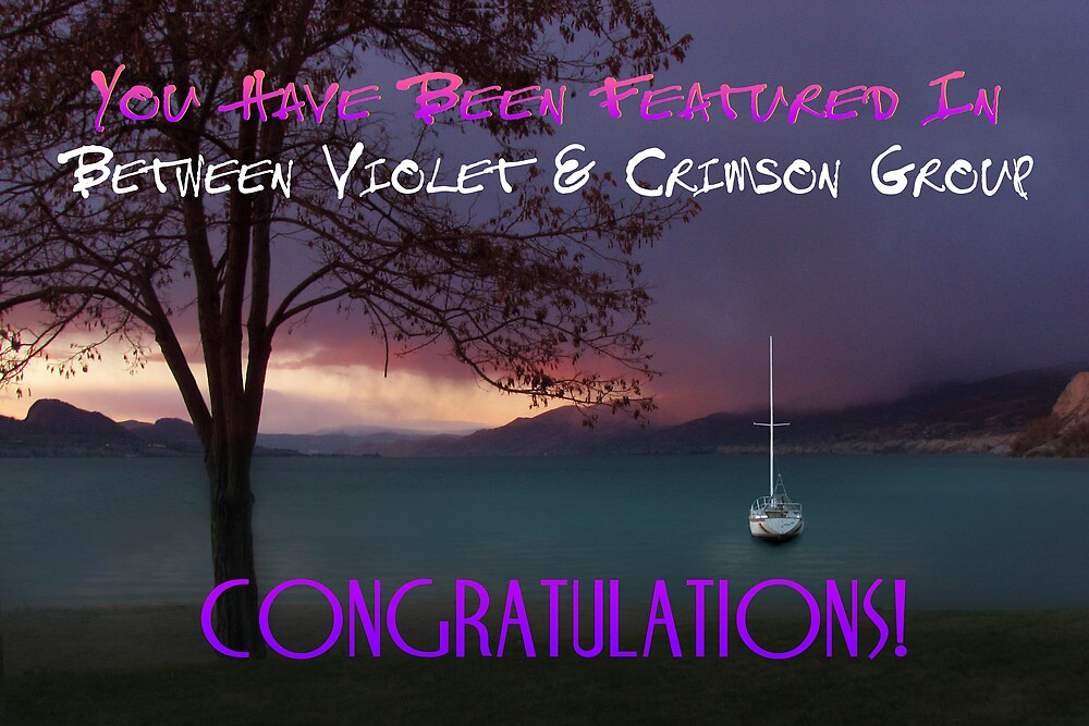 Banner Between Violet & Crimson Featured by John Poon