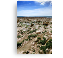 Birling Gap Beach Canvas Print