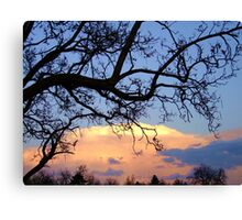 To Have and To Hold Canvas Print