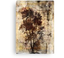 Trees sing of Time - Vintage Canvas Print
