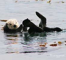 Sea Otter Plays by Inga McCullough