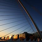 Samuel Beckett Bridge Close up at Dawn by Paul  Kane
