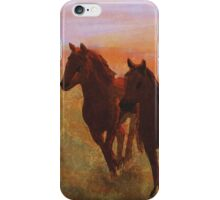 Western Mural iPhone Case/Skin