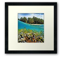 Coral reef fish underwater and coconut trees Framed Print