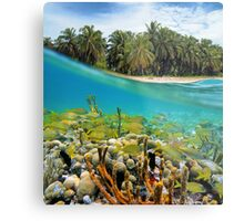 Coral reef fish underwater and coconut trees Metal Print