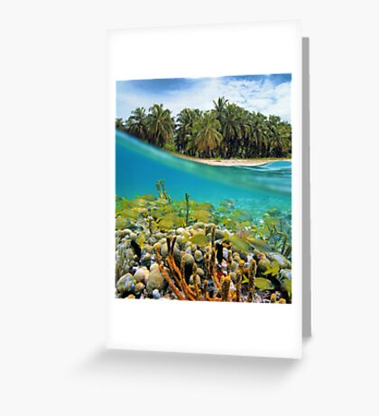 Coral reef fish underwater and coconut trees Greeting Card