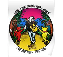 What a long strange trip it was! Poster