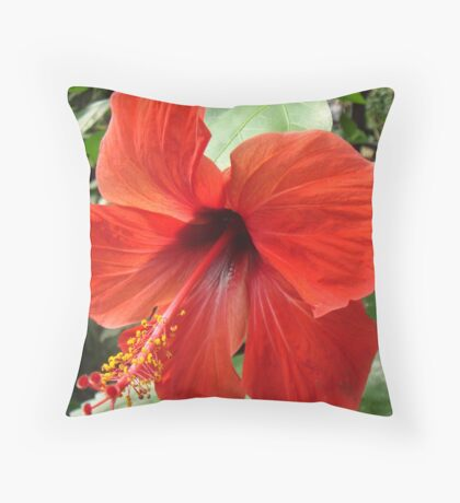 Postbox Red Throw Pillow