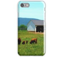 Virginia Hunt Country iPhone Case/Skin