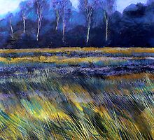 Golden Fields by Richard Sunderland