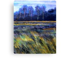 Golden Fields Canvas Print