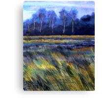 Golden Fields Canvas Print