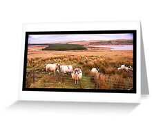 Ram of Donegal Greeting Card