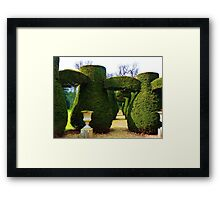 Topiary 2 Framed Print