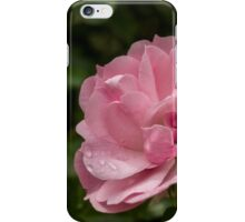 Pink Wild Rose iPhone Case/Skin