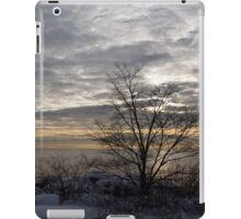 Early Morning Tree Silhouette on Silver Sky iPad Case/Skin