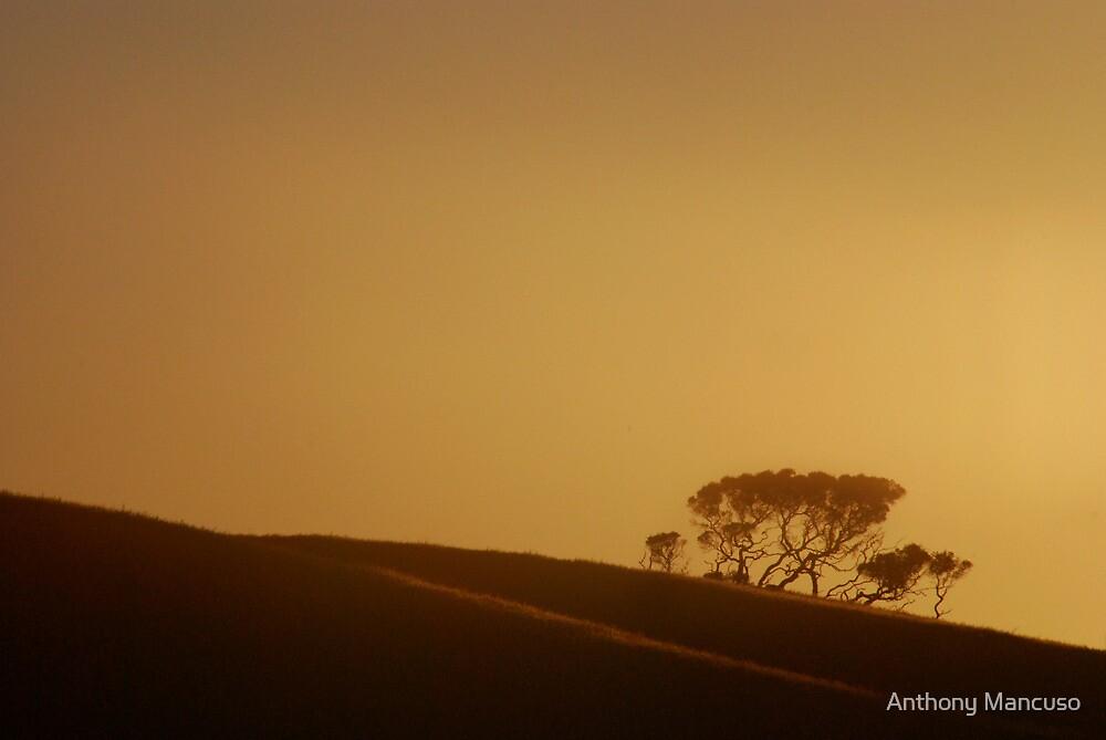 dusk by Anthony Mancuso