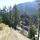 Northern Rockies,Montana , USA by kkphoto1