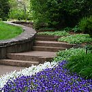 Up The Floral Walkway by Gretchen Dunham