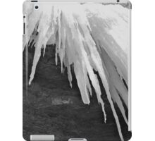 bw ice iPad Case/Skin
