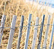 Wooden Fence Along Carolina Beach by amykaren