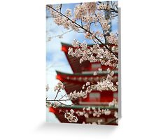 Cherry Blossom Season Greeting Card