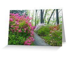 Azalea Walk Greeting Card