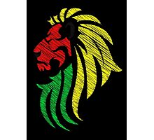 Lion Reggae Colors Cool Flag Vector Art  Photographic Print