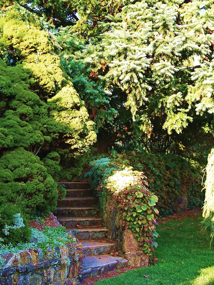 The Stairs that lead to the Garden  by fiat777