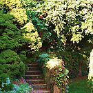 The Stairs that lead to the Garden  by Rick  Todaro