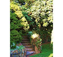 The Stairs that lead to the Garden  Photographic Print
