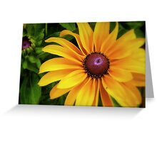 A Ray Of Sunshine Greeting Card