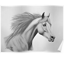 """Spirit of the Sands"" - Arabian horse Poster"