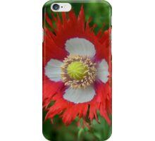 Fringed poppy iPhone Case/Skin