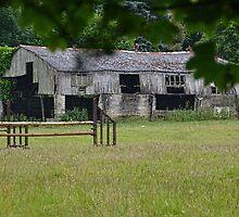 Dilapidated Barn. Dorset UK by lynn carter
