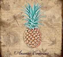 Pineapple, Ananas Comosus Vintage Botanicals collection by Glimmersmith