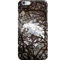 Marshmallow Rabbit Thicket  iPhone Case/Skin